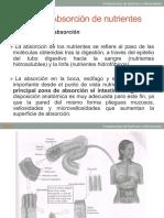 Tema 4 parte 2 (3).pdf