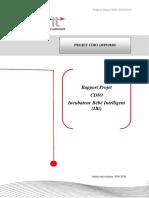 Rapport Projet CDIO (2019-2020)Version Correcte.pdf