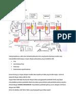 PATOFISIOLOGI Infark Miokard