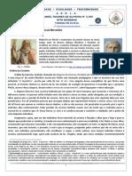 O mito da caverna e a camara de reflexão.pdf