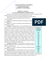 Objetivo Nª 1 La Célula.pdf