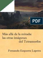 Mas_alla_de_la_mirada_las_otras_imagenes.pdf
