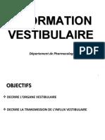 5 Information vestibulaire