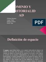 DOMINIO Y TERRITORIALIDAD