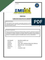 Becerra 6907649 - Ejercicios Boletas Garantía.pdf
