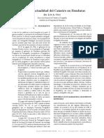 catastro en honduras.pdf