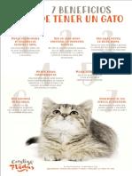 7-beneficios-de-tener-un-gato