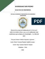 tesis en cebolla.pdf