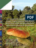 Guia-de-hongos-Totonicapan