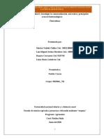 Actividad 3. aporte trabajo colaborativo 05_ 302568.docx