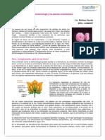 biotecnologia_plantas_ornamentales