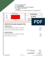 T001-0819894898.pdf