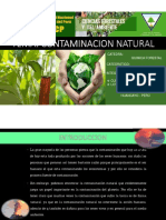 CONTAMINACION NATURAL.pdf