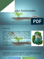 Actitudes Ambientales.pptx