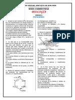 CoTaMaNíA - Fotosíntesis