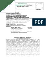 PRACTICA FRANCIS  MRP.docx