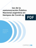 Gasparin Junio de 2020 Las Cuentas de La APN en Tiempos de COVID