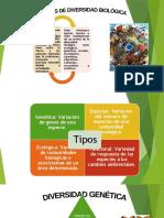TIPOS DE DIVERSIDAD.pptx