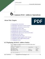 01-06 Common MAC Address Operations