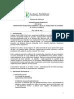 TDR CONSULTORIA SISTEMATIZACION PROYECTO (1)