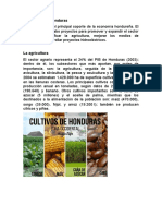 informe final agricultura en Honduras