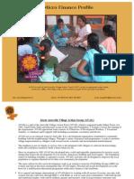 VillageAction Micro Finance Profile