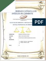 Derecho procesal penal monografista