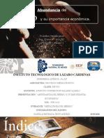 ABUNDANCIA DEL HIERRO Y SU IMPORTANCIA ECONOMICA