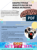 PERSPECTIVAS ALTERNATIVAS DE LA MEMORIA HUMANA