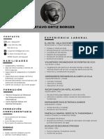 GustavoOrtiz_CV2020.pdf