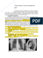 radiologie 3