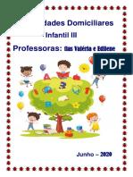 Atividades Domiciliares Inf. III