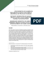 enzimas de almidon de yuca.pdf