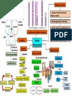 Modelo Interaccionista