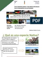 Identificación de Fauna Nativa