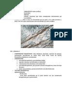 imagenes y analisis del microscopio