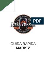 Mesa Boogie Mark v - Guida Rapida
