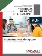Programa de becas internas.pdf