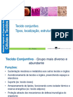 Tecido Conjuntivo.pdf