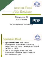 Operation Flood White Revolution