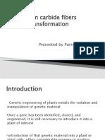 Silicon Carbide Fibers Transformation.pptx2