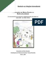 Ensino no meio roral.pdf