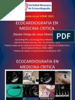 Ecocardiografia en Medicina Critica