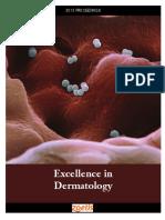 9 ExcellenceI in Dermatology 2013 Proceedings Esp