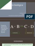 w2 Oxidacion Biologica.pdf