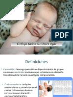 convulsionesneonatalescinthya-121118221841-phpapp02