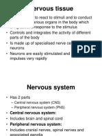 7. Nervous tissue