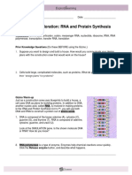 GIZMOS+RNA+Protein+Synthesis+Lab