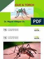 Clase 8. Dengue  TORCH