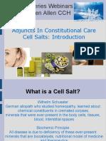 CELL SALT KALI PHOS